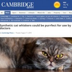 Michelle's contribution on synthetic cast whiskers reaches local news